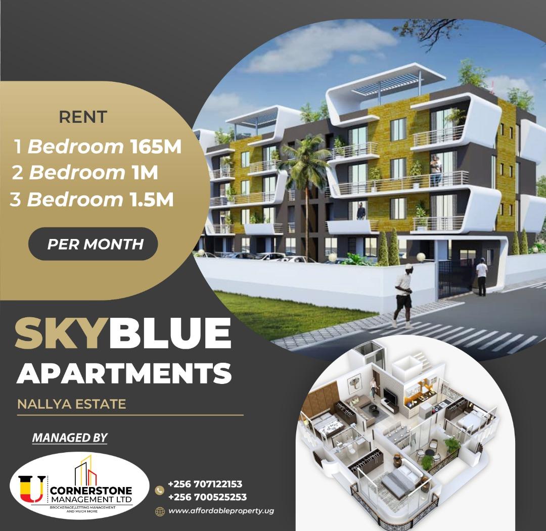 Skyblue Apartments Flyer